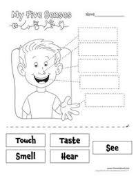 the five senses worksheets 5 teaching 5 senses pinterest