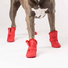 wellies boots canada pooch