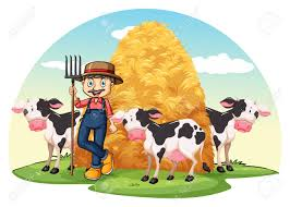 farmer with cows standing with a hay royalty free cliparts
