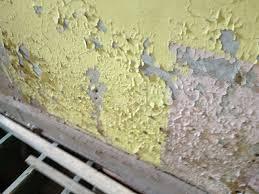 Sealant Paint For Damp Interior Walls Interior Design New Paint Damp Walls Interior Home Design Image