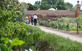 the walled garden is home to a small colony of beehives set up