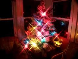 flocked tree with c7 lights