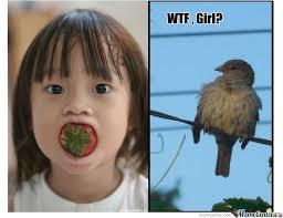Wtf Girl Meme - wtf girl by recyclebin meme center