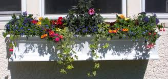 whimsical window boxes u2013 the simple elements