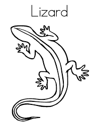 desert lizard coloring page lizard coloring pages l for lizard coloringstar
