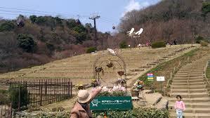 Herb Gardens by Kobe Nunobiki Ropeway Part 2 Herb Gardens And Urban Recreation