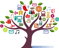 does your company have a social media plan boxile
