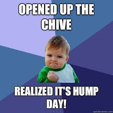 The Chive Memes - opened up the chive realized it s hump day success kid quickmeme