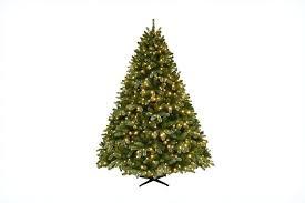 10 tree pre lit amodiosflowershop