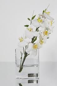Deco Vase White Phalaenopsis U0026 Bamboo Leaves In Deco Vase Emilio Robba