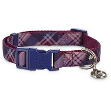 dog collars harnesses u0026 leashes dog collars u0026 leashes petco