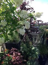 Urban Garden Supply - 173 best images about urban scape on pinterest gardens roof