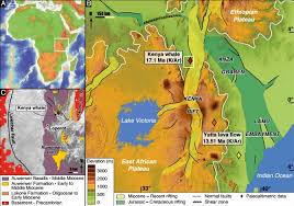 africa map by year 17 million year whale fossil provides 1st exact date for east