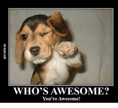 You Are Awesome Meme - who s awesome you re awesome whos awesome meme on me me