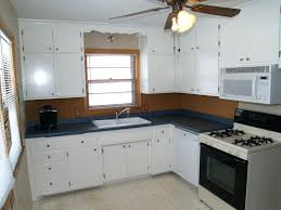 Spray Paint Cabinet Doors Black Cabinet Kitchen Cabinets Paint Or Stain Ideas For