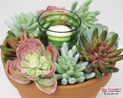 Garden Craft Terra Cotta Marker - inspirations diy crafts projects tutorials ben franklin