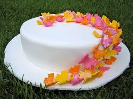 butterfly cake vegie mix butterfly cake