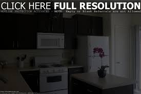 Lobkovich Kitchen Designs by Behr Paint Kitchen Cabinets Home Decoration Ideas