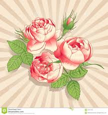The Pink Peonies by The Pink Peonies On The Light Background Royalty Free Stock Photos