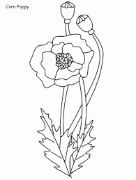 bluebells flowers coloring pages u0026 coloring book