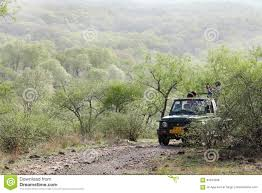 safari jeep front clipart tourist waiting on safari jeep in ranthambore national park