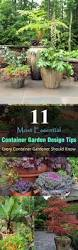container gardening 11 most essential container garden design tips designing a