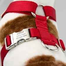 Comfortable Strap On Harness Adjustable Dog Harness No Choke Personalized Pet Id Tag