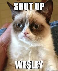Shut Up Wesley Meme - shut up wesley misc quickmeme