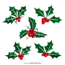 christmas mistletoe illustrated isolated christmas mistletoe vector
