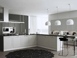 cuisine grise pas cher cuisine grise et blanche inspirations avec cuisine blanche et