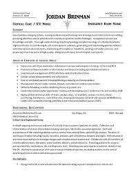 er nurse resume professional objective exles er nurse resume er nurse resume exle er nurse resume objective
