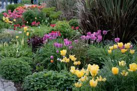 Bathtub Planter Garden Design Garden Design With The Runnerduck Cedar Planter Box