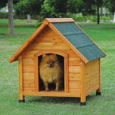 Dog House Designs With Creative Plans Homestylediary Wooden