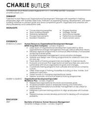 Plain Text Resume Example by Organisational Development Cv Example For Human Resources Livecareer