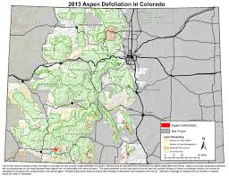 Aspen Colorado Map by Wiggly Creatures U0027 Chomp Aspens