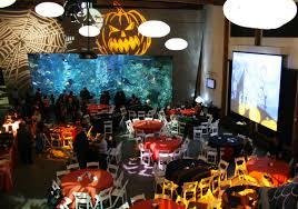 seattle aquarium at night happy halloween