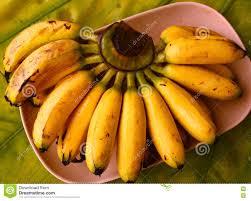 bunch of ripe mini bananas stock photo image 71380791