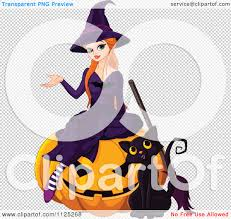 friendly halloween background cartoon of a halloween witch and her cat on a jackolantern