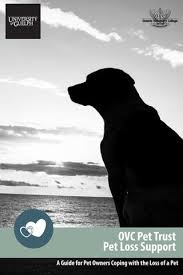 coping with loss of pet ovc pet trust pet loss support guide by ovc pet trust issuu