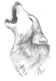 25 unique animal sketches ideas on pinterest animal drawings