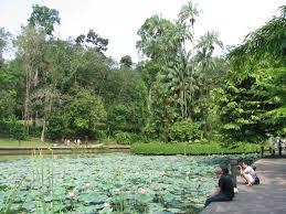 Botanical Gardens In Singapore by File Singapore Botanic Gardens Symphony Lake 7 Sep 06 Jpg