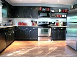 Kitchen Cabinet Bugs Diy Painted Black Kitchen Cabinets 25 Best Black Distressed