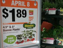 spring black friday sales home depot bonnie veggie plants 1 89 reg 3 78 at home depot today only