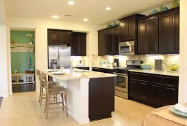 Dark Espresso Kitchen Cabinets Staining Kitchen Cabinets Espresso Kitchen Cabinets