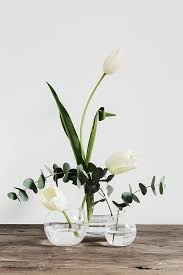 White Flowers Pictures - best 25 single flowers ideas on pinterest paper flower