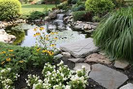 Backyard Pond Building 10 Best Garden Pond Building Practices