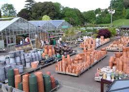 native plant centre garden nurseries plant nursery wikipedia garden centres in