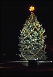 national community christmas tree