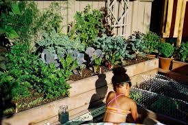 Herb Garden Idea Easy Herb And Vegetable Garden Designs Hgtv