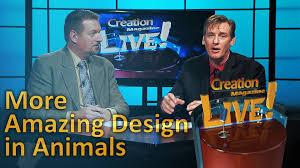 more amazing design in animals creation magazine live 5 22